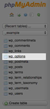 The WordPress options table.